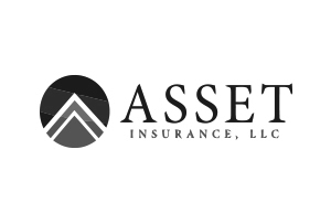 Asset Insurance, LLC Logo